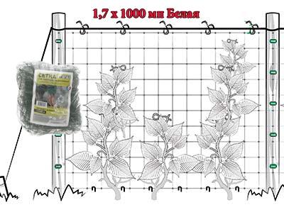 Сетка полимерная ОРТИНЕТ белая (1.7Х1000 мп)