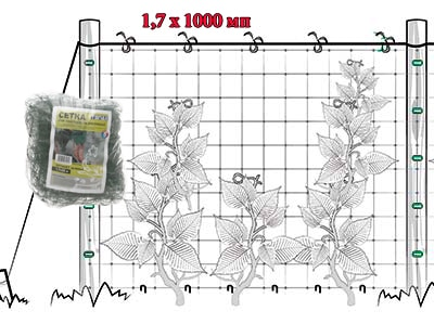 Сетка полимерная ОРТИНЕТ зеленая (1.7Х1000 мп)