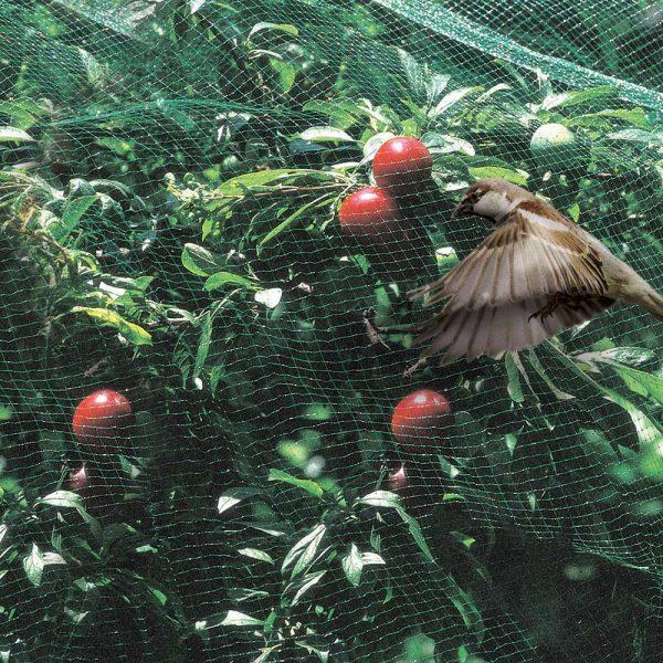 Сетка от птиц ОРТОФЛЕКС (2Х500 мп)
